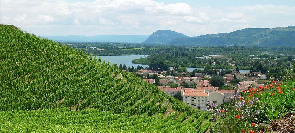 Route des vins en vallee du rhone auberge de thorrenc - Chambre d agriculture du rhone ...